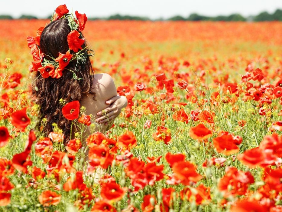 women flowers poppies wallpaper