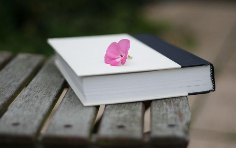 bench books pink flowers wallpaper