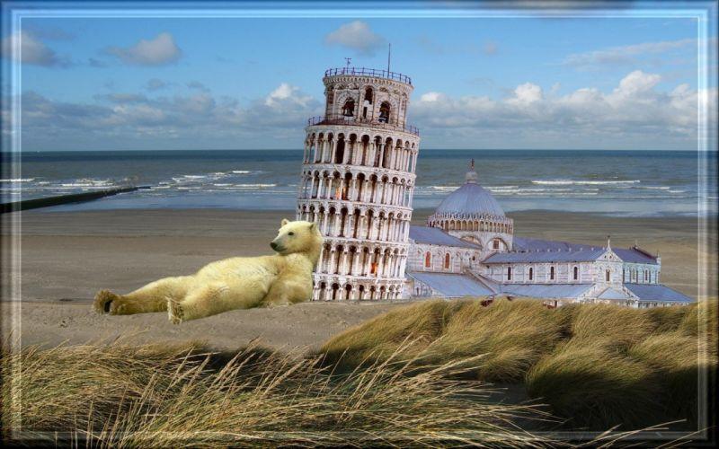 buildings bears wallpaper