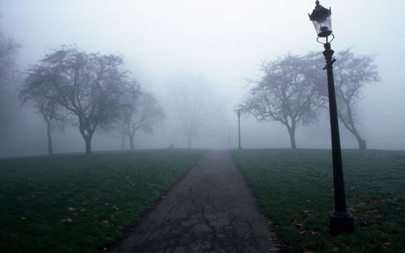 paths fog wallpaper