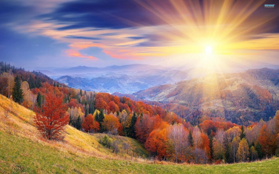 sunrise mountains autumn forests leaves wallpaper