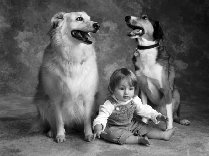 dogs grayscale friendship children wallpaper