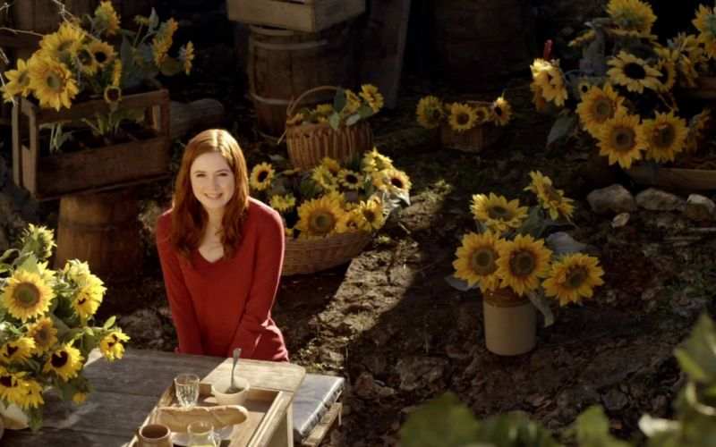 Karen Gillan Amy Pond Doctor Who sunflowers wallpaper