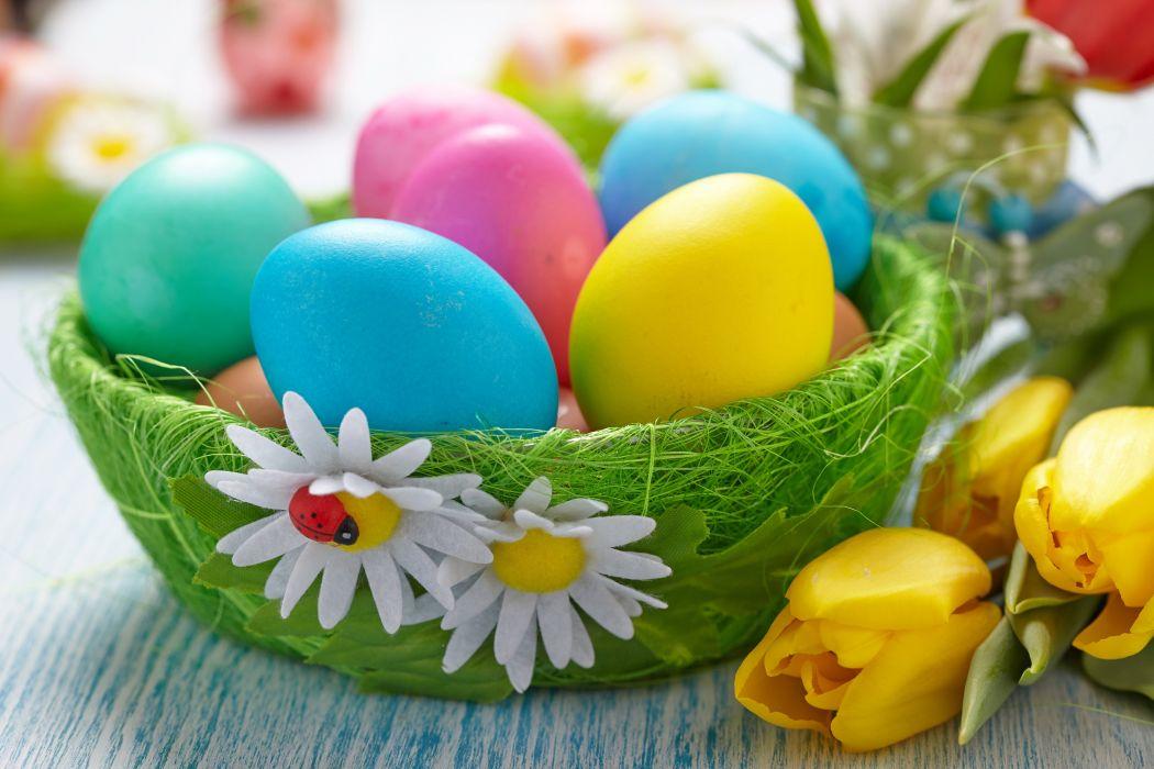 basket Easter Tulips Eggs wallpaper