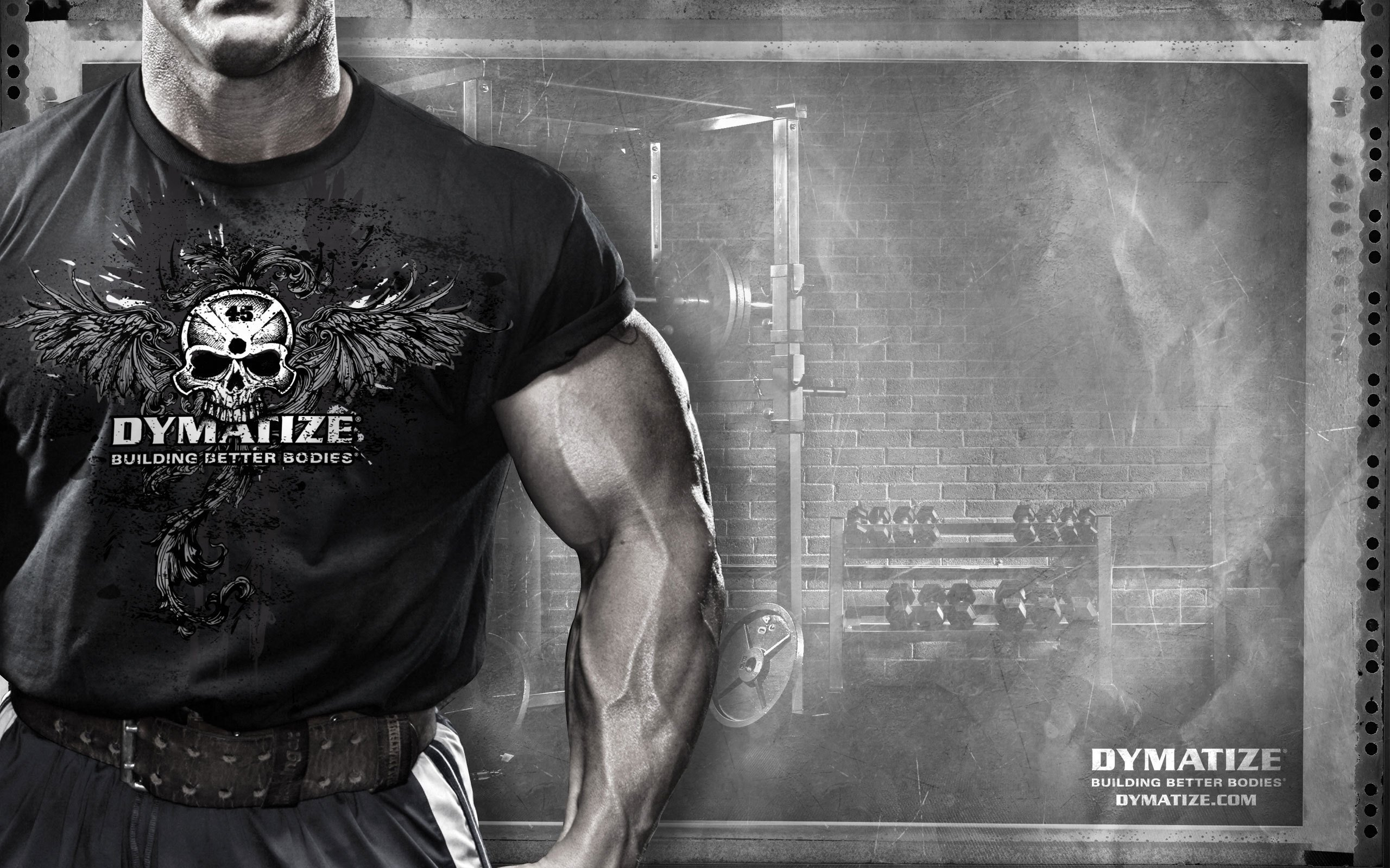 Dymatize Andy Haman Sportpit Sports Muscle Fitness Bodybuilding Skull  Wallpaper