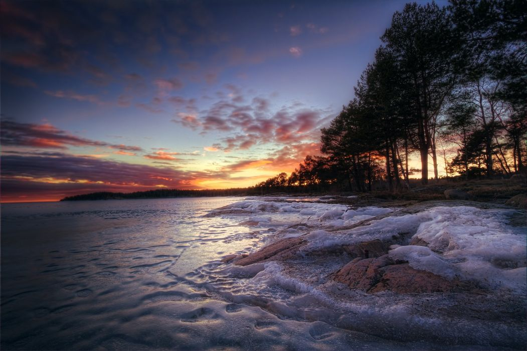 ice trees lake winter forest wallpaper