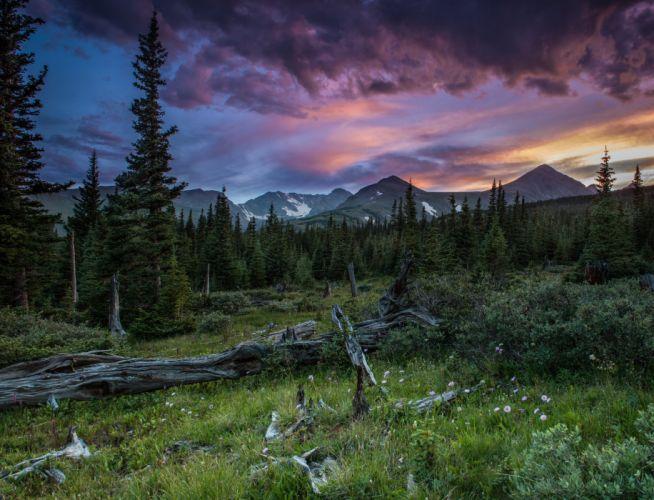 mountains summer forest sunset wallpaper