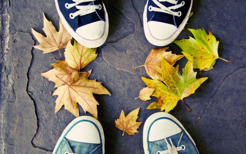 autumn shoes Converse fallen leaves wallpaper