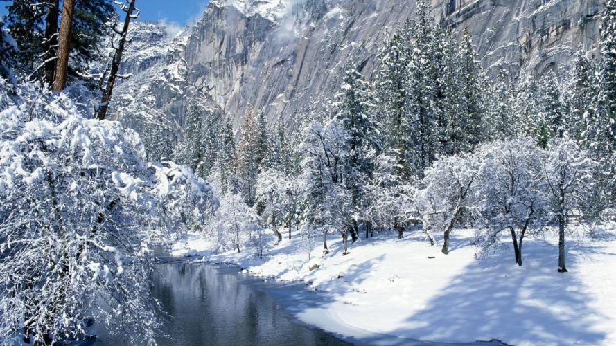 nature winter snow trees hills lakes badgers wallpaper