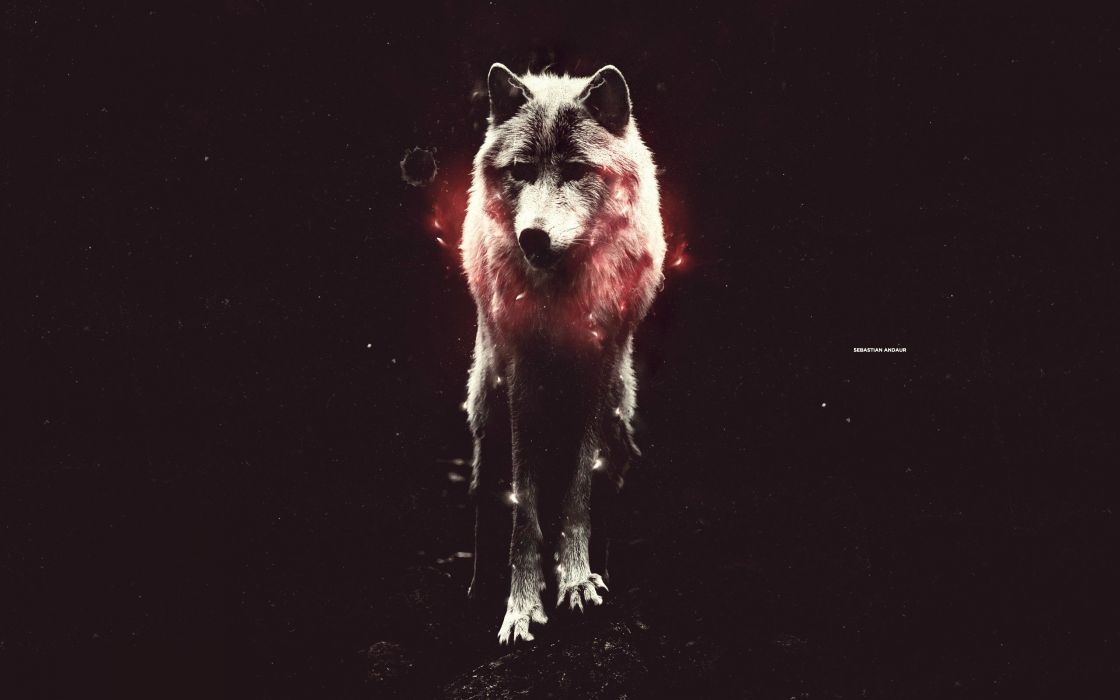 photo manipulation wolves wallpaper