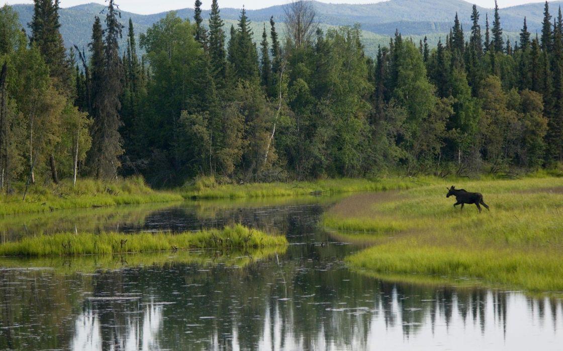 landscapes nature running lakes wallpaper