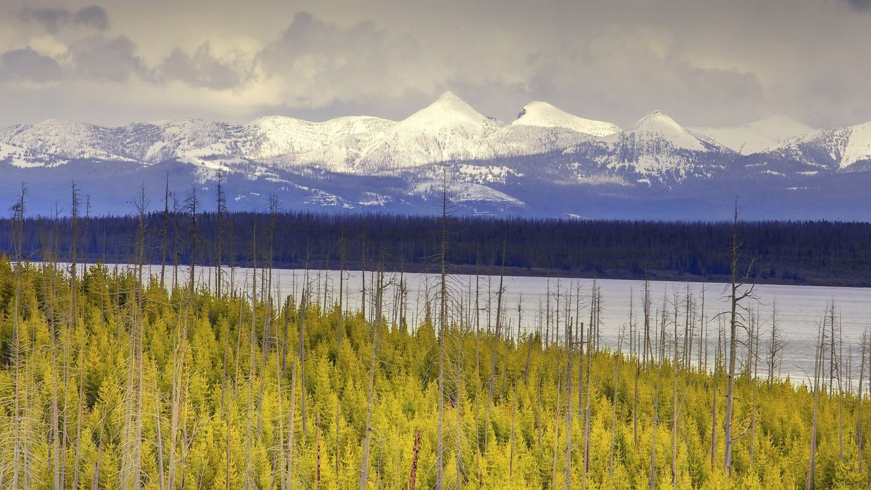 Yellowstone National Park contrast wallpaper