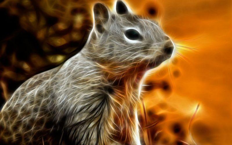 animals Fractalius squirrels wallpaper