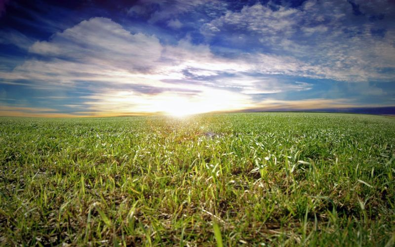 clouds landscapes grass wallpaper