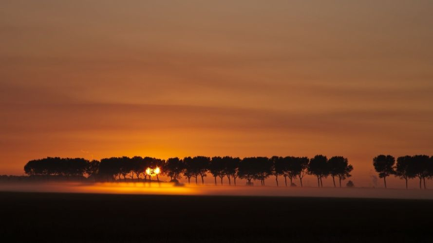 sunset landscapes nature trees silhouettes fog evening wallpaper
