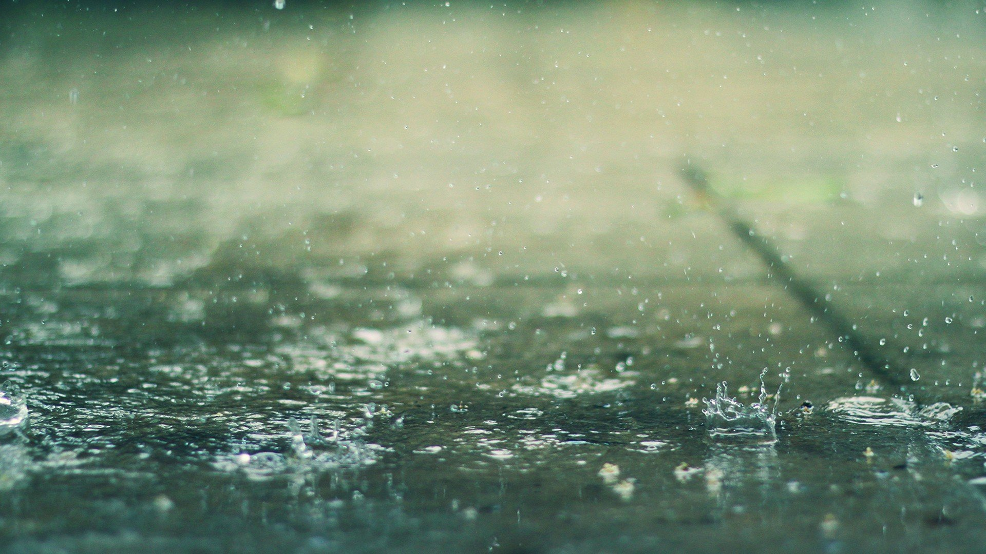 Water rain water drops depth of field splashes wallpaper