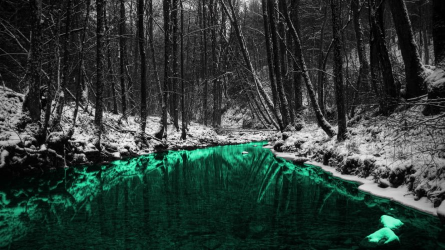 green nature forests outdoors selective coloring rivers wallpaper
