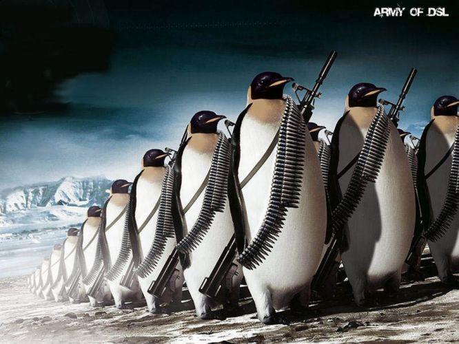 animals Linux tux penguins wallpaper