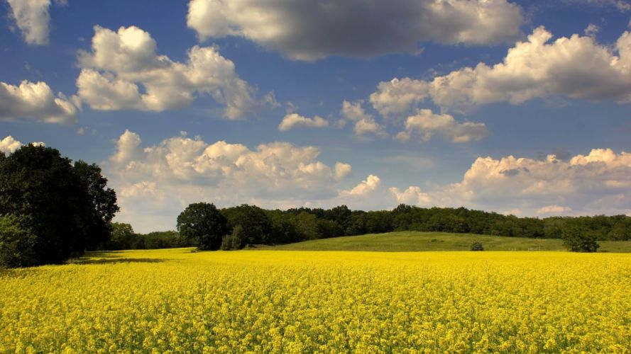 clouds landscapes nature fields skyscapes land wallpaper