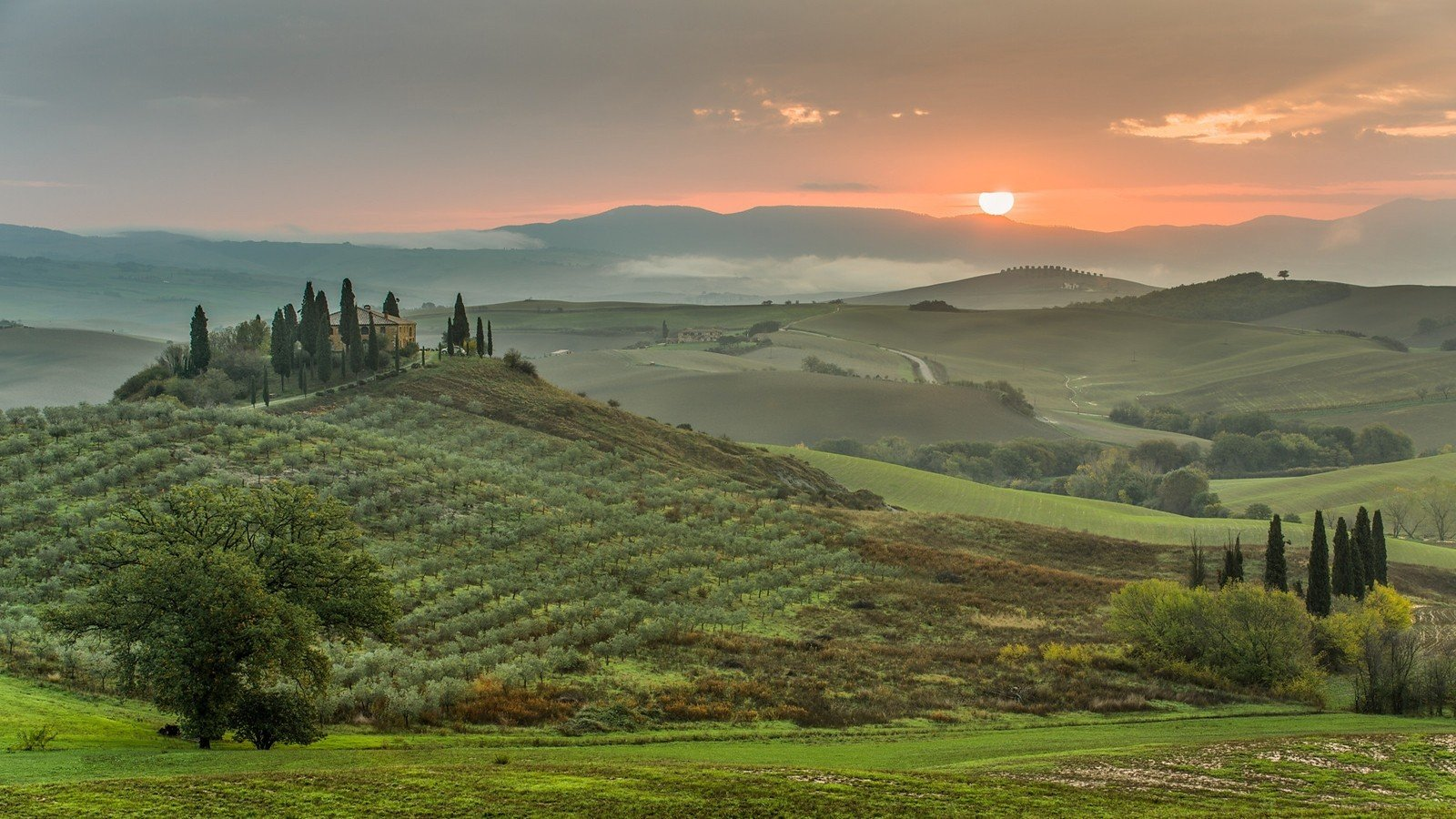 Green sunset landscapes nature trees grass houses hills for Toscana house