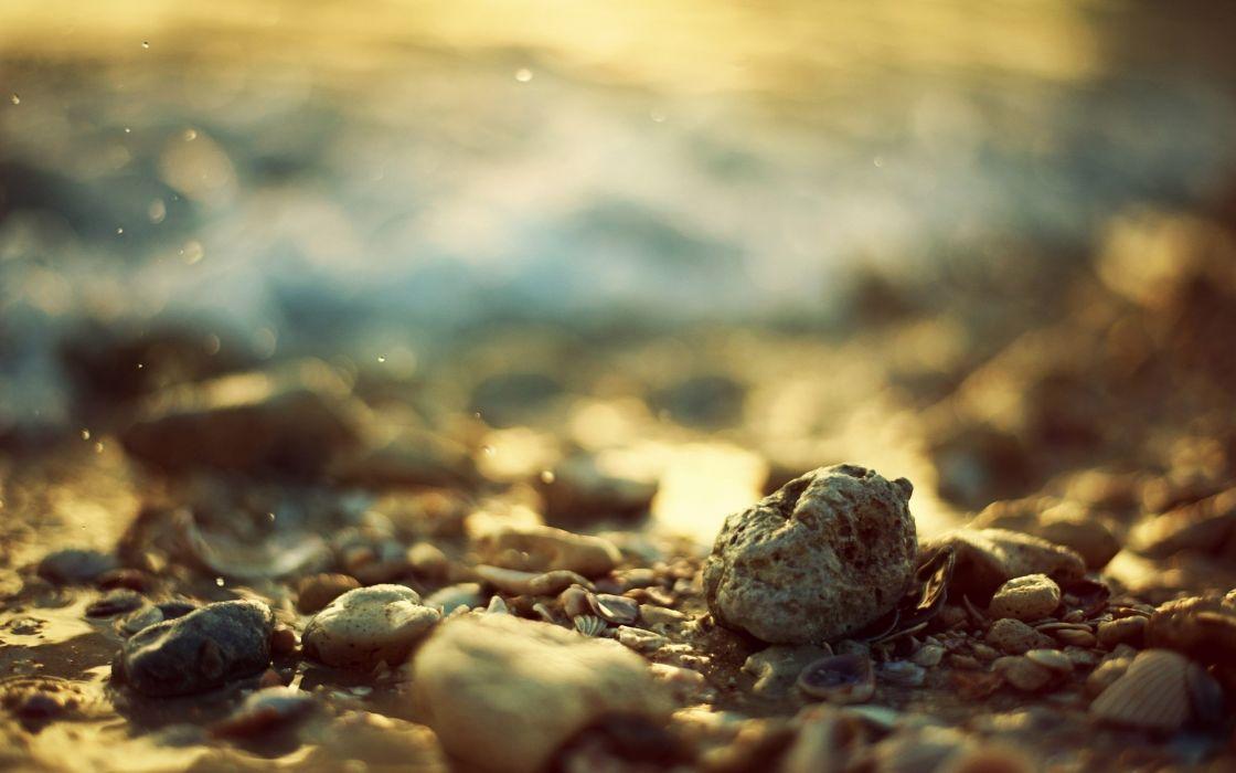 stones seashells depth of field wallpaper