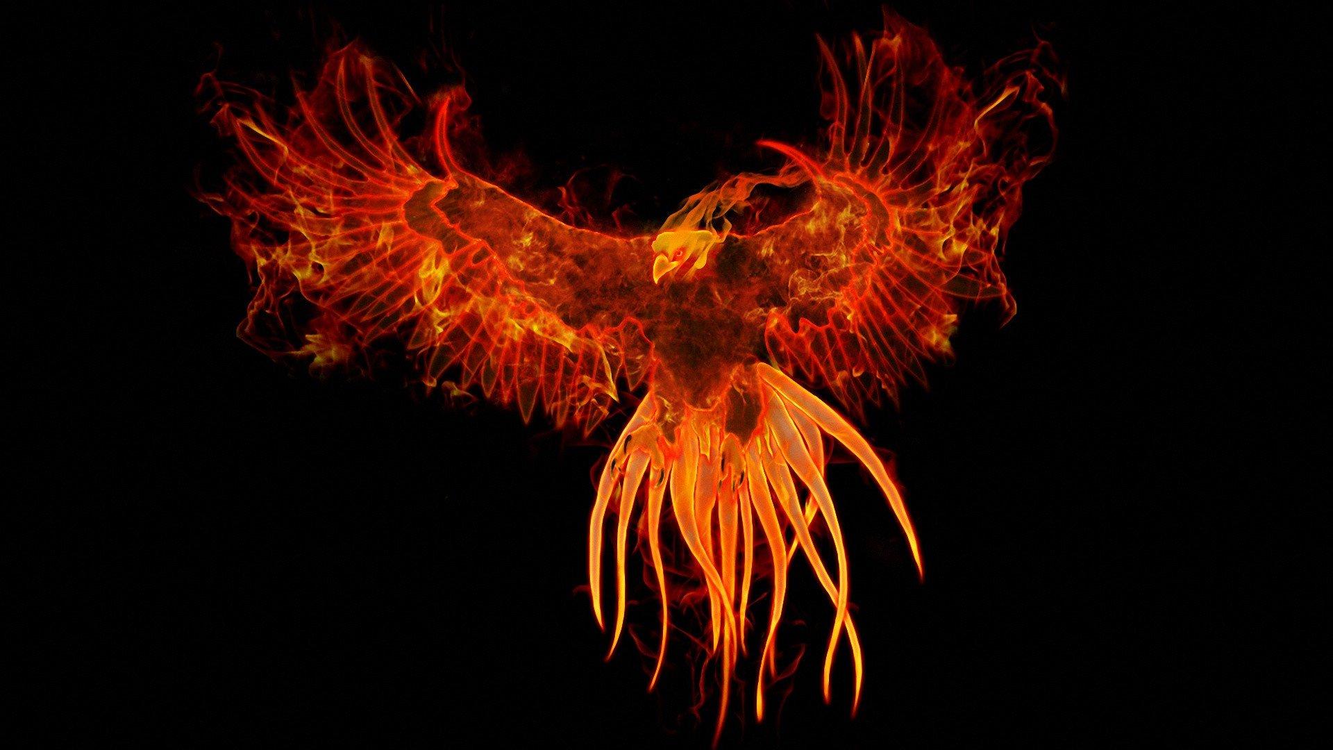 Painting Art Phoenix Fire Fantasy Digital Drawing: Birds Fire Phoenix Fantasy Art Digital Art Artwork