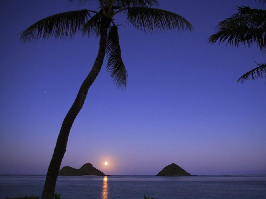 Hawaii islands palm trees Oahu Moonrise wallpaper
