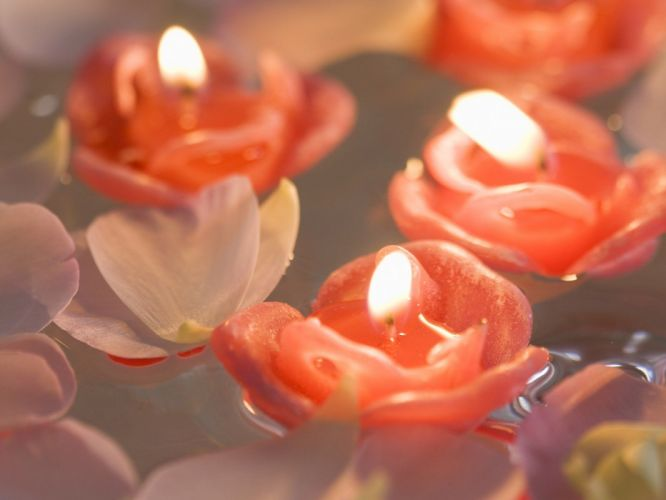 flowers home candles still life wallpaper