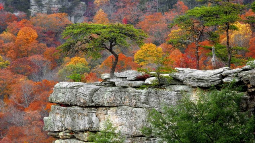 autumn falls Tennessee parks resort wallpaper