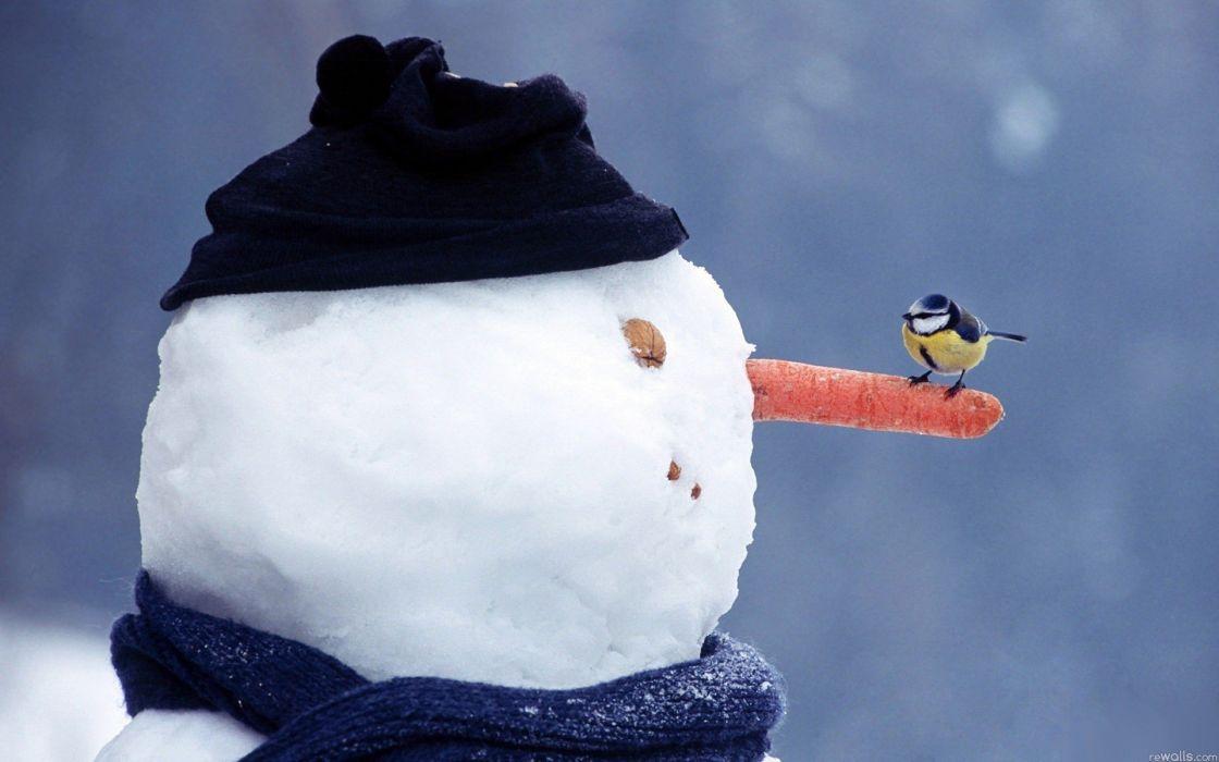 birds snowmen wallpaper
