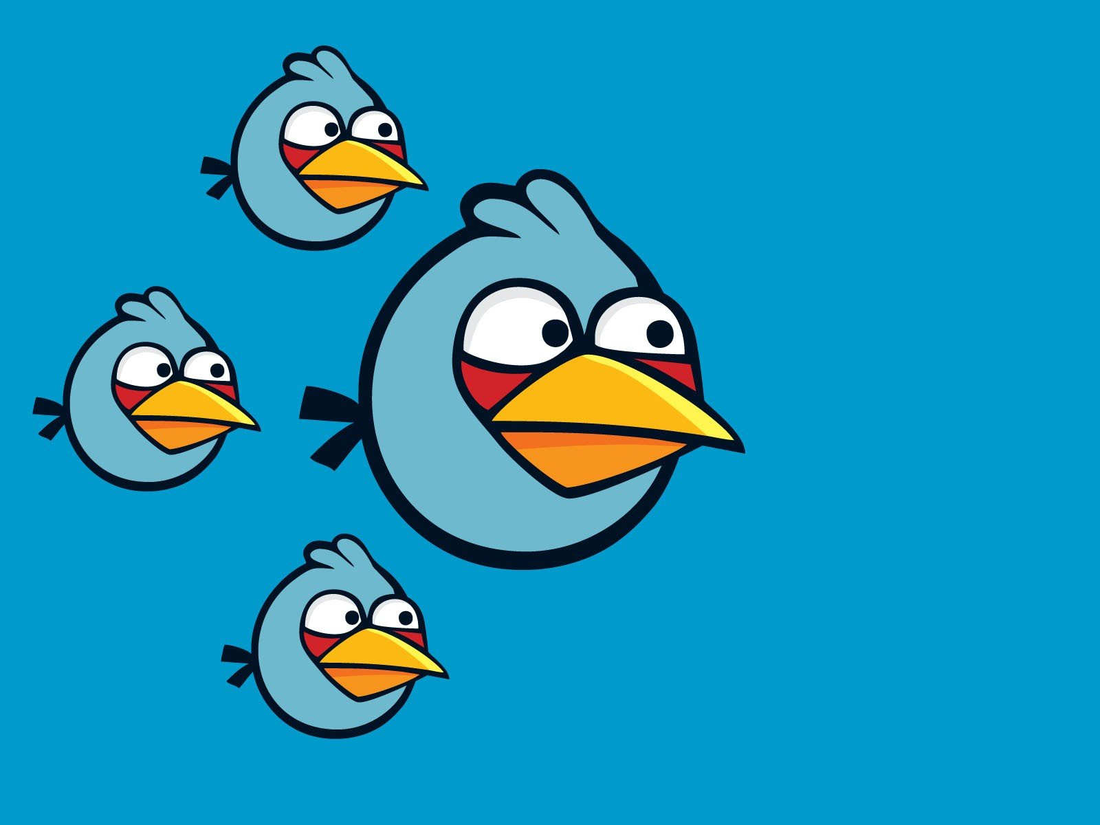 Blue Freedom Angry Angry Birds Simple Background Blue Bird Wallpaper 1600x1200 316261 Wallpaperup