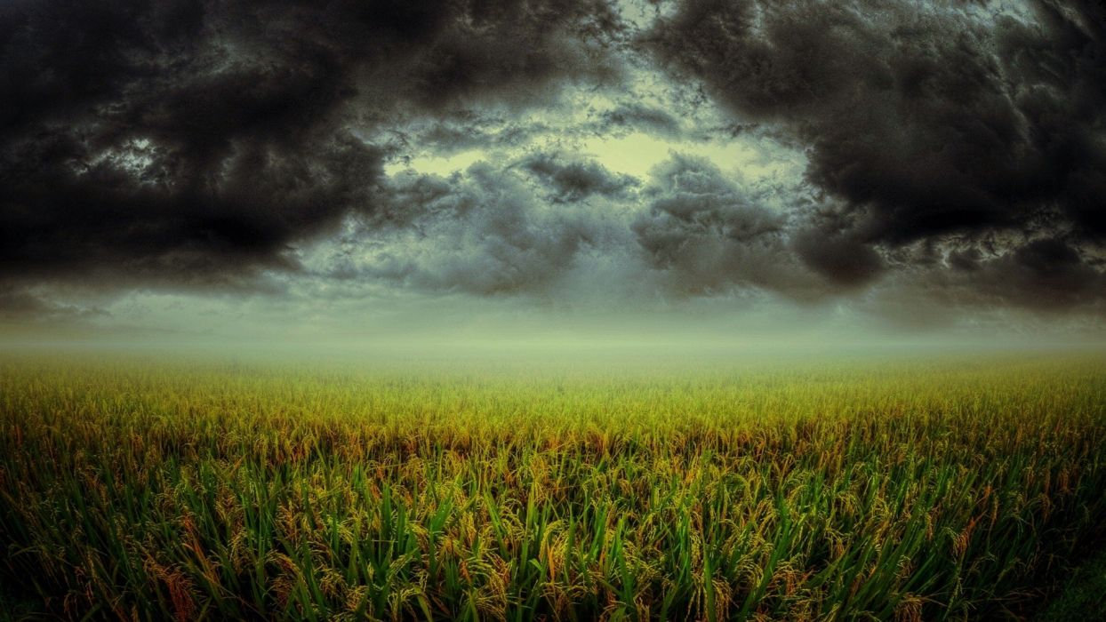green clouds landscapes nature storm fields plants dark cloud skies wallpaper