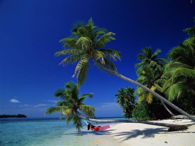 landscapes tropical wallpaper