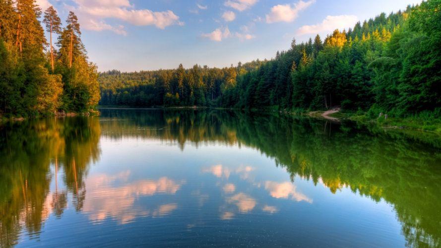 landscapes nature wood scenario wallpaper