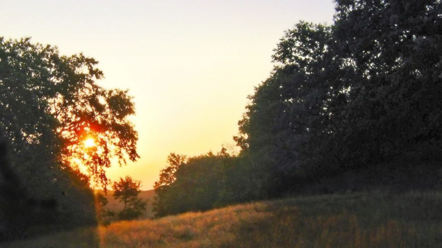 sunset Sun forests Bulgaria skies wallpaper