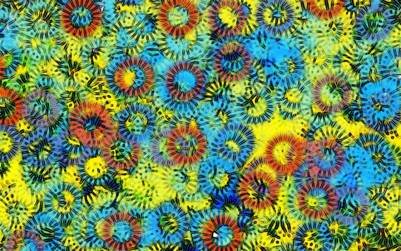 fractals summer colors apophysis color composition wallpaper
