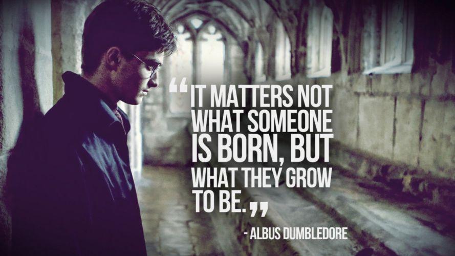quotes Harry Potter Daniel Radcliffe Albus Dumbledore wallpaper