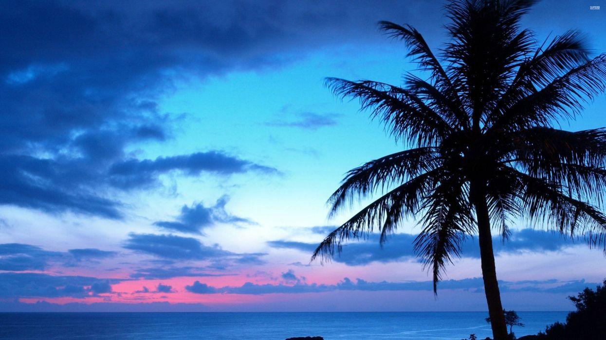 blue-sunset-27271-3840x2160 wallpaper