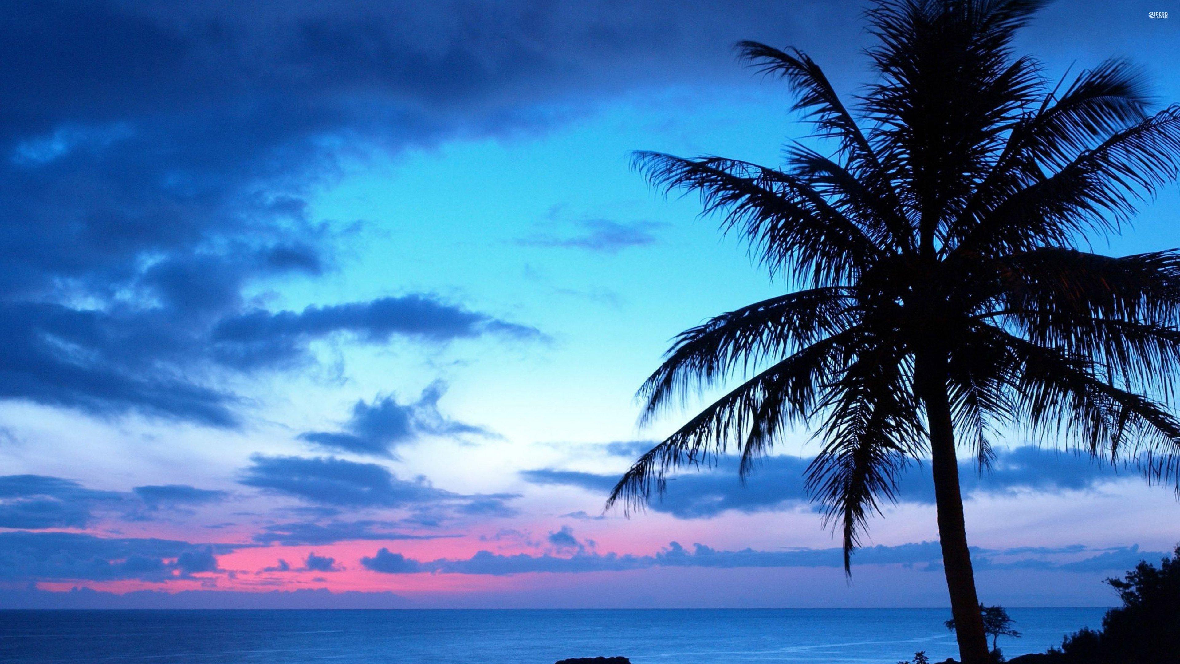 Blue-sunset-27271-3840x2160 wallpaper | 3840x2160 | 317469 ...