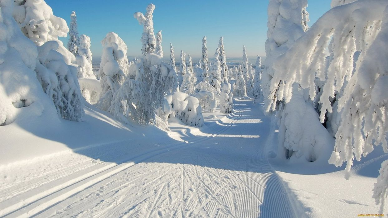 Download wallpapers winter snowy road forest snowdrifts blue