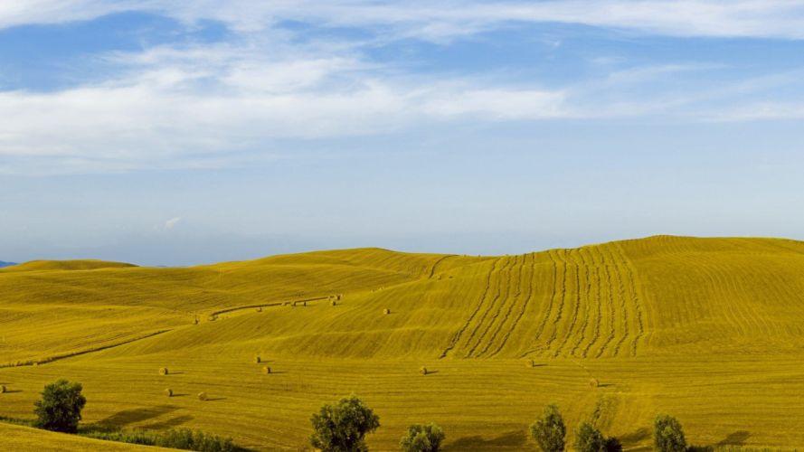 landscapes nature grass fields wallpaper