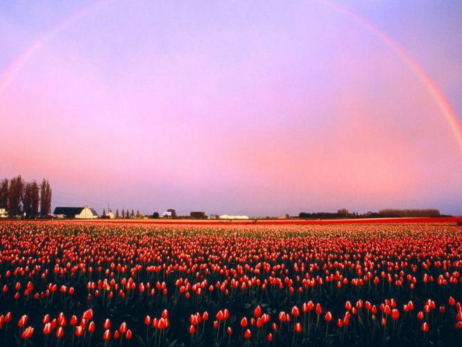 nature fields valleys rainbows Washington wallpaper