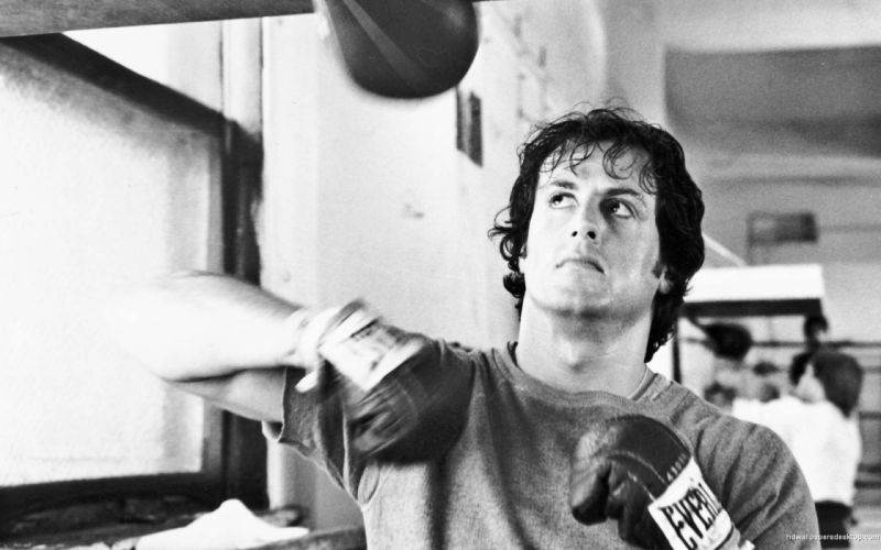 movies men boxing Rocky Balboa actors Rocky the movie Sylvester Stallone boxers rocky wallpaper