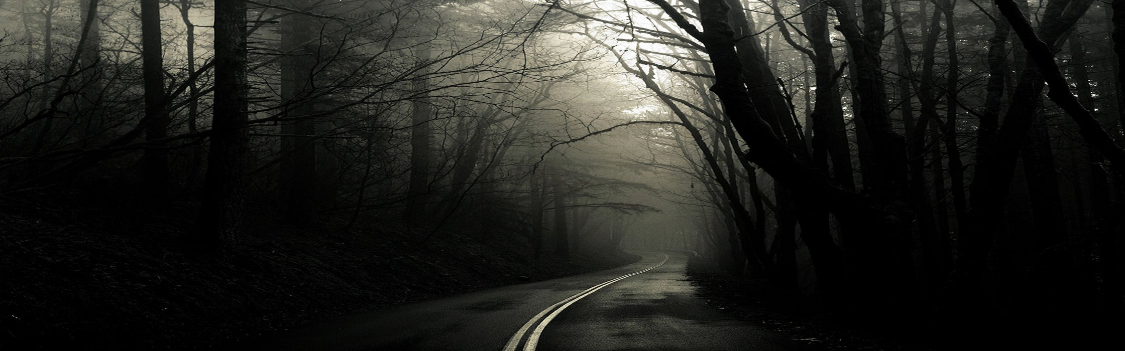 forests fog roads Greg Martin wallpaper