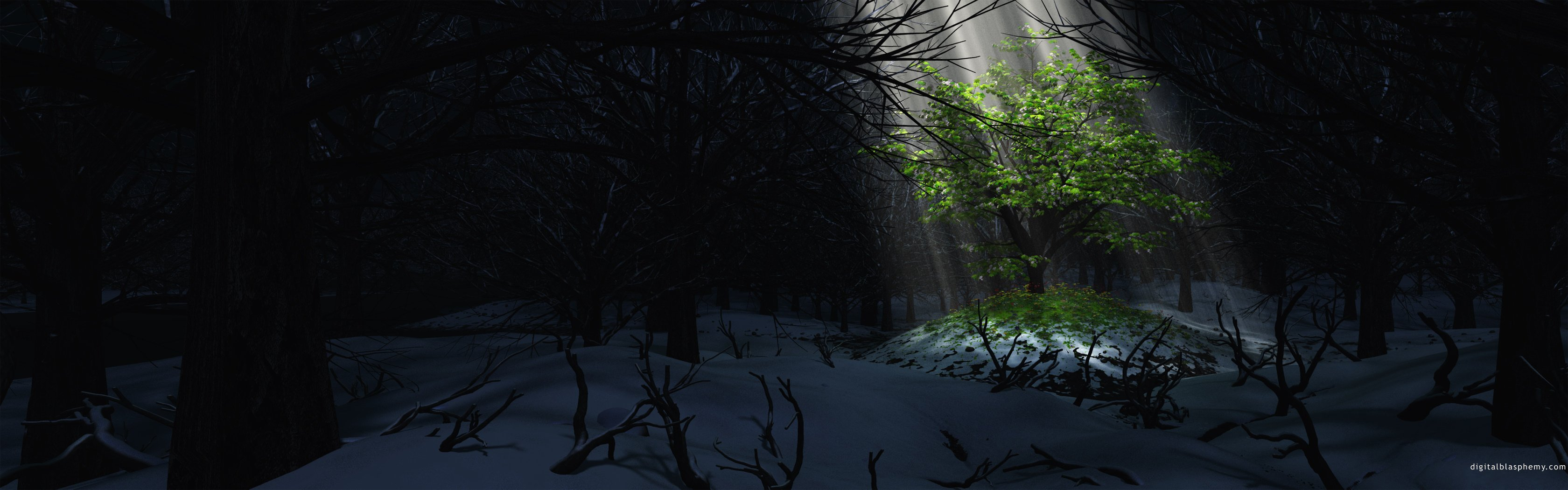 trees forests wallpaper 3360x1050 319437 wallpaperup