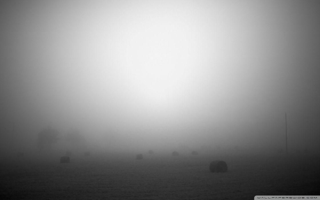 fog mist wallpaper