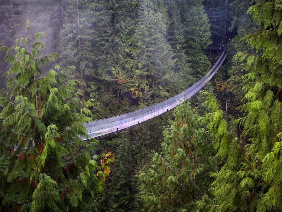 Vancouver British Columbia suspension bridge Capilano Suspension Bridge wallpaper