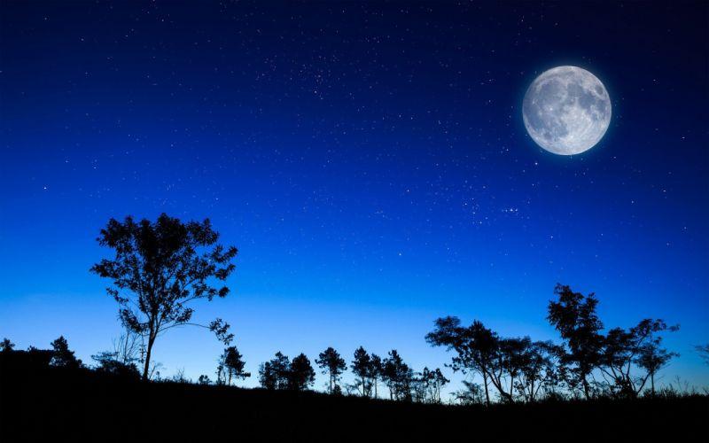 night Moon wallpaper