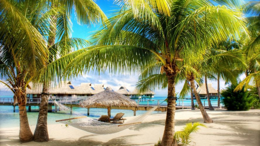 tropical vacation exotic wallpaper