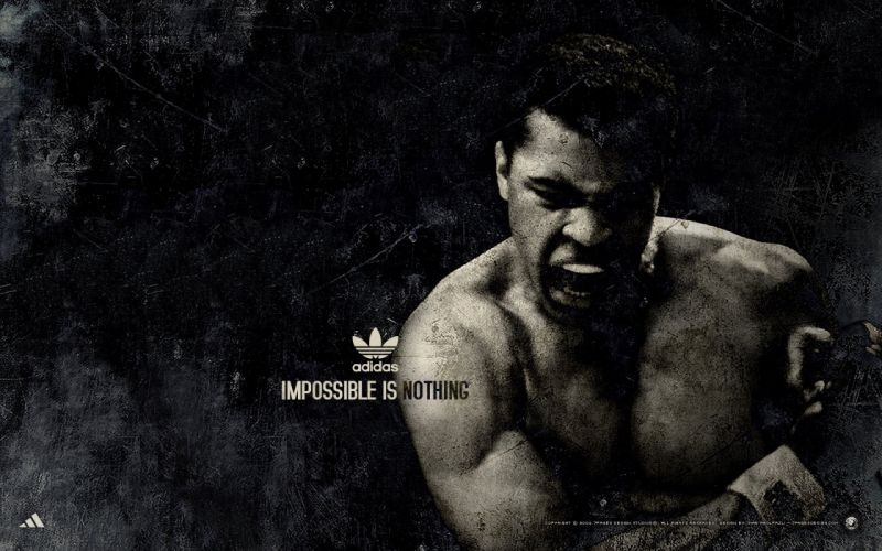 BOXING fighter warrior fight battle (151) wallpaper